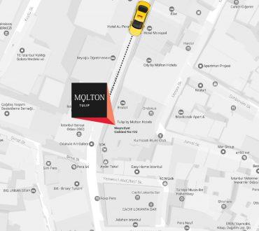 molton-tulip-location-taxi